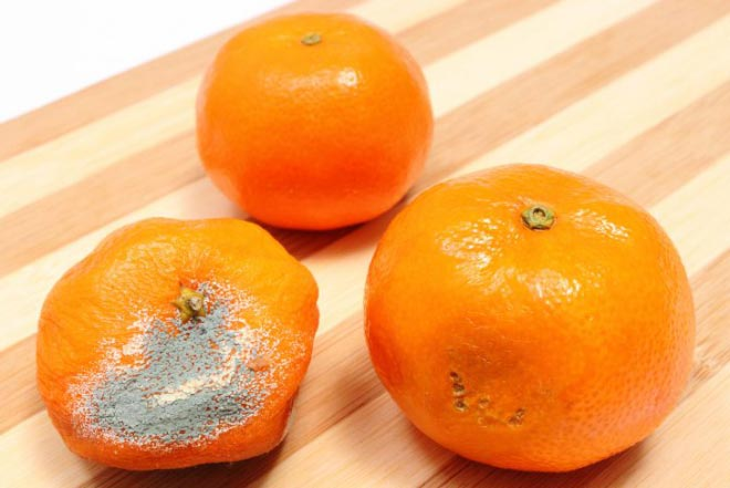 Испорченный мандарин