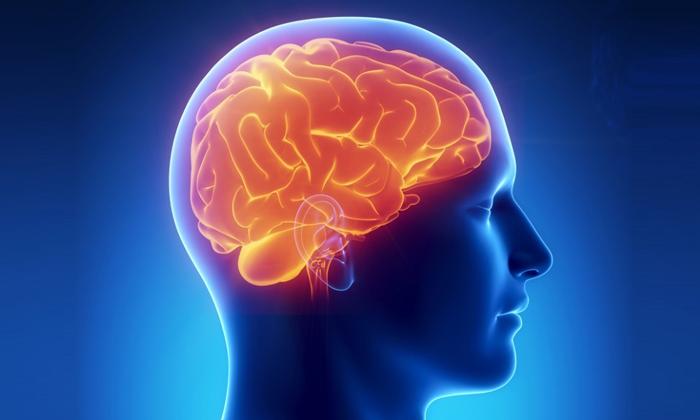 Патологический процесс может возникнуть на фоне воспалительного, инфекционного или дегенеративного процесса, отека, сдавливания или гипоксии мозга