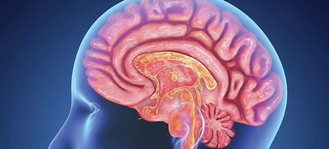 Особенности первой степени дисциркуляторной энцефалопатии