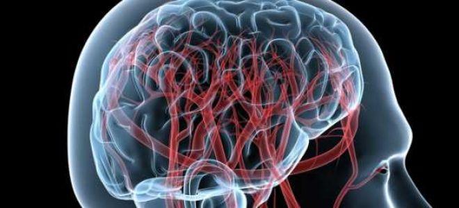 Диагностика заболеваний головы