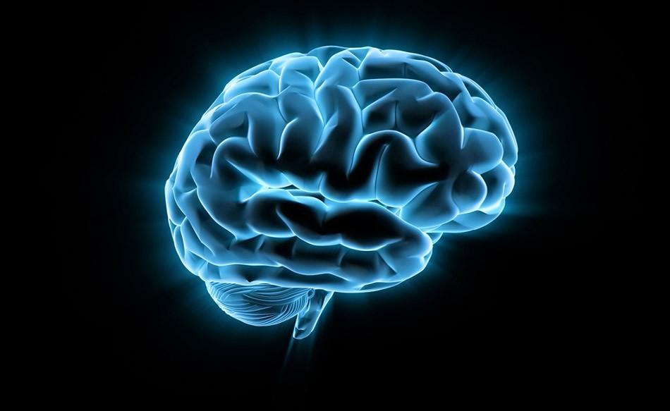 Как подготовиться к проведению МРТ головного мозга?
