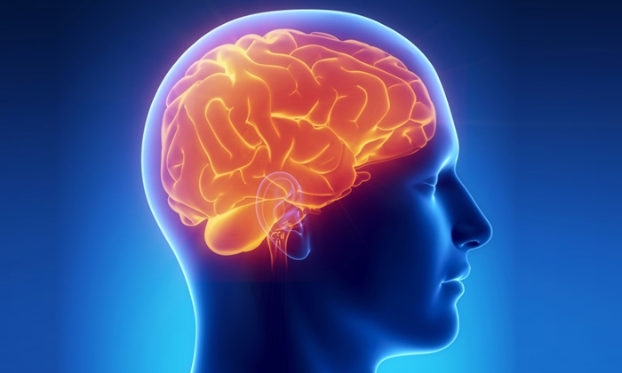 Можно ли при сотрясении мозга пить алкоголь