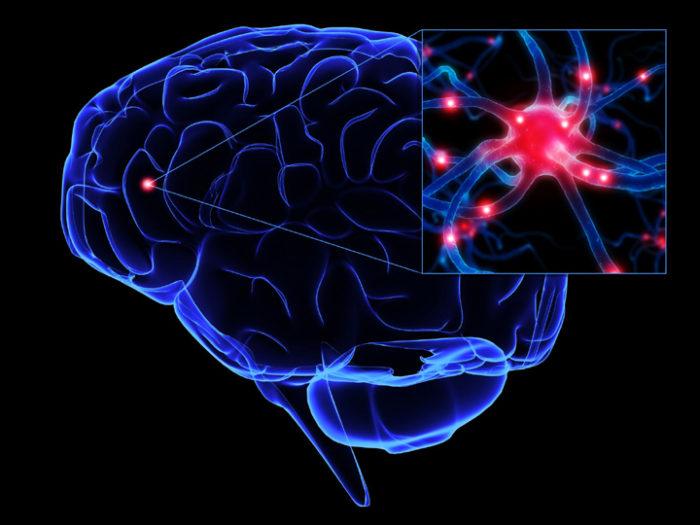 воспаление нейронов мозга