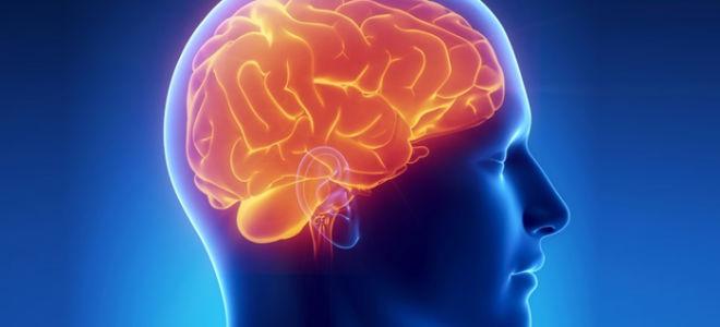 Причины и проявления корковой дизартрии, лечение